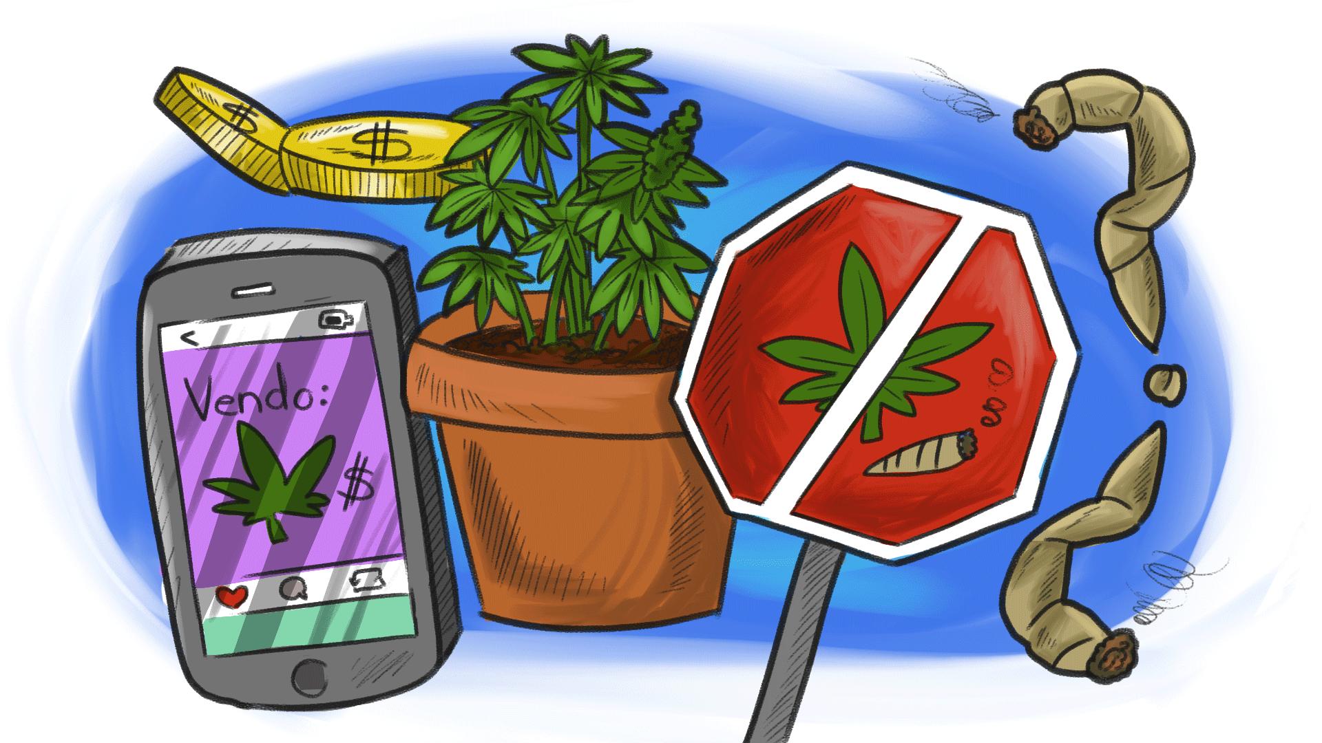 regulación marihuana México